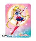 Sailor Moon - Placca In Metallo/Metal Plate - Sailor Moon