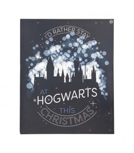 HARRY POTTER CALENDARIO DELL'AVVENTO ADVENT CALENDAR HOGWARTS CHRISTMAS